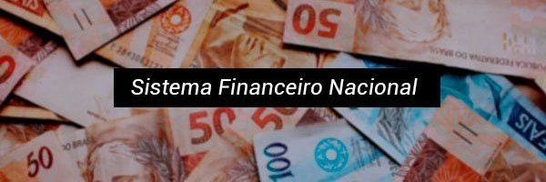 Sistema Financeiro Nacional: função, estrutura e instituições