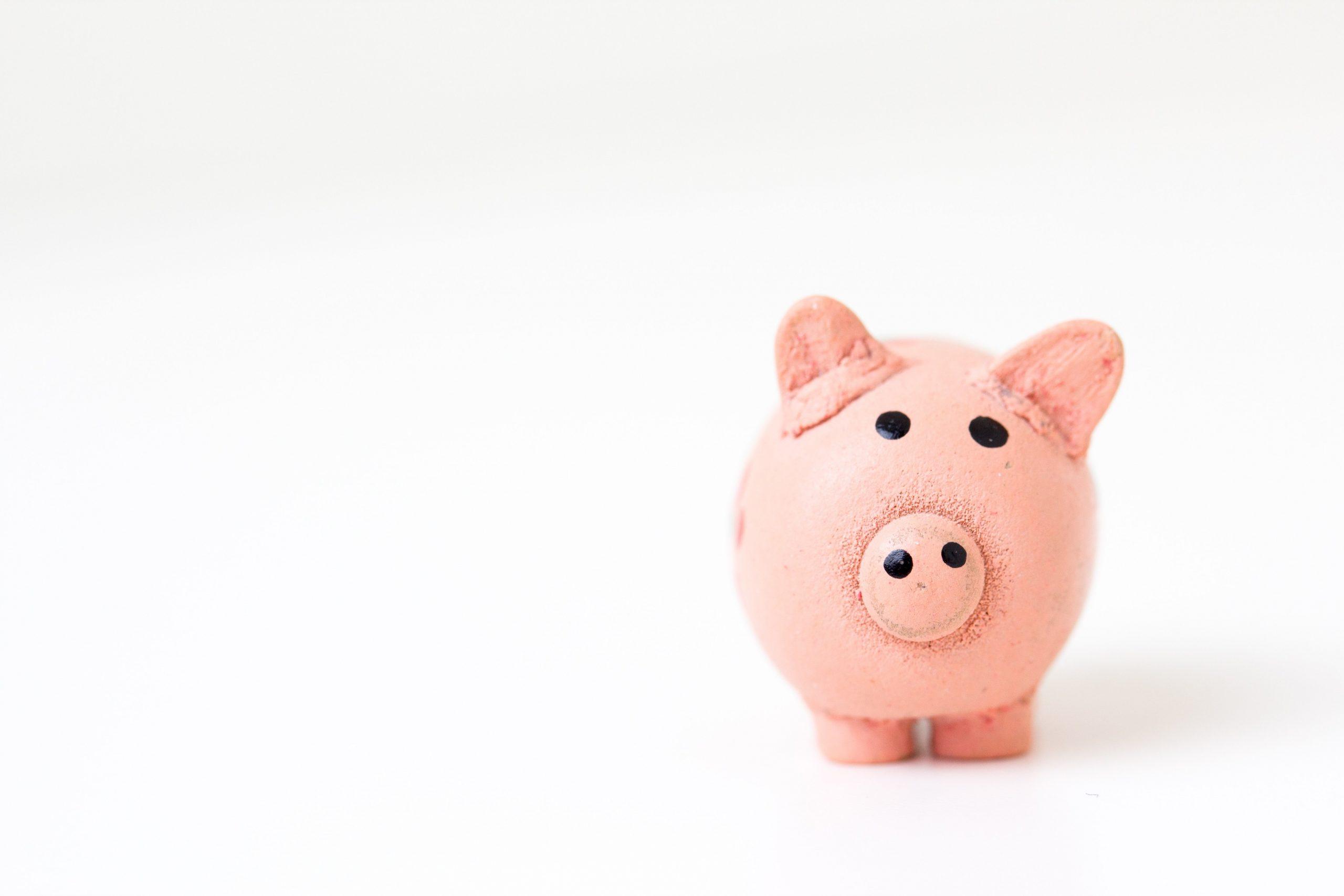 dicas de organização financeira para investir em uma certificação